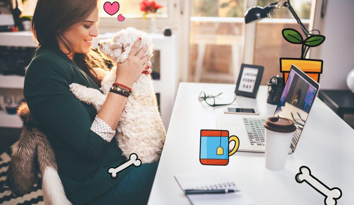 Faut-il vraiment amener son chien au bureau pour plus de bien-être ?